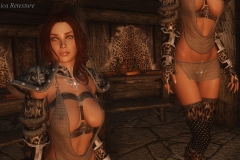 The Elder Scrolls 5: Skyrim (MODS) (9)