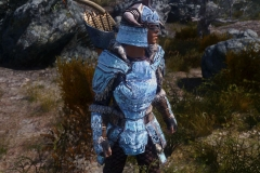 The Elder Scrolls 5: Skyrim (MODS) (4)