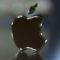 Прототип iPhone 7 засняли на видео