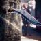 Гайд Assassin's Creed: Syndicate – список лучшего оружия в игре