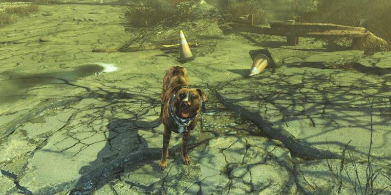 Гайд Fallout 4: Far Harbor – где найти новых компаньонов (спутников)
