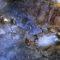 inXile Entertainment показала геймплей Wasteland 3