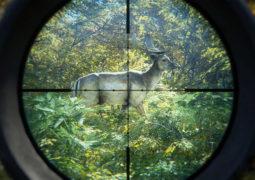 Анонсирована новая игра от Avalanche Studios – theHunter: Call of the Wild. Появились системные требования