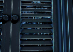 В конце мая выйдет хоррор Perception, создающийся разработчиками BioShock